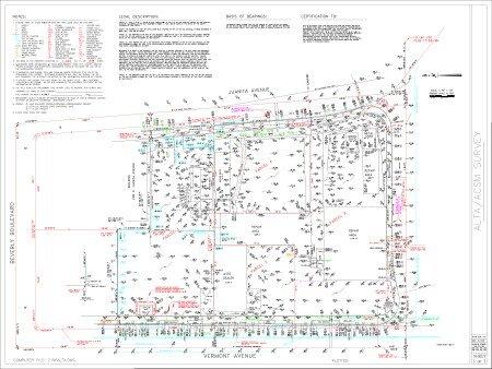 ALTA Survey Texas